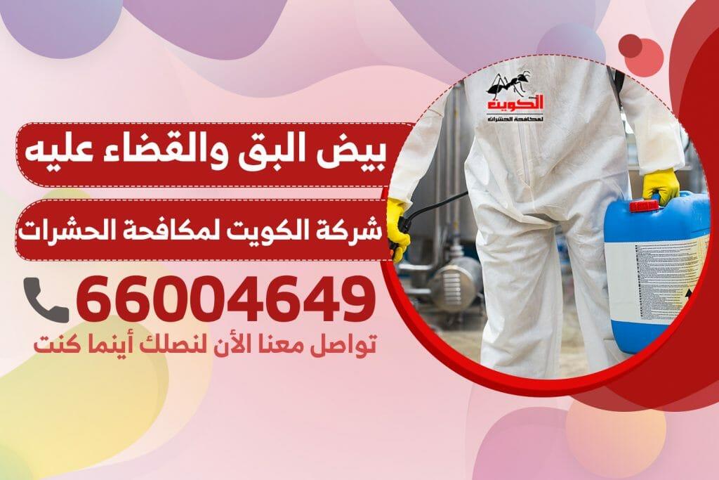 بيض البق والقضاء عليه | شركة الكويت لمكافحة الحشرات