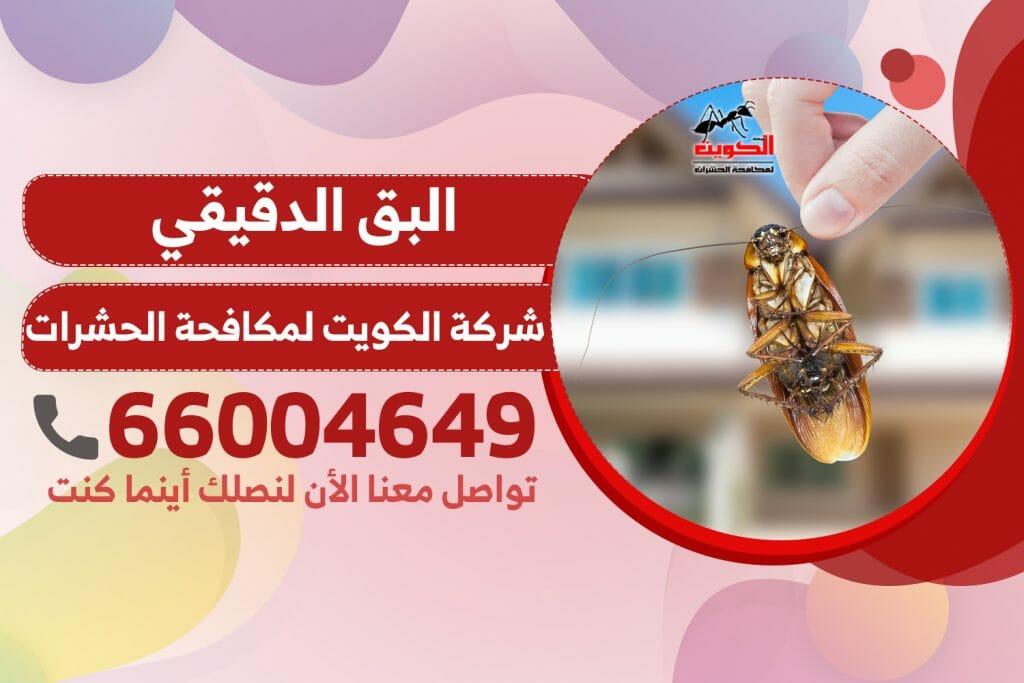 البق الدقيقي | شركة الكويت لمكافحة الحشرات