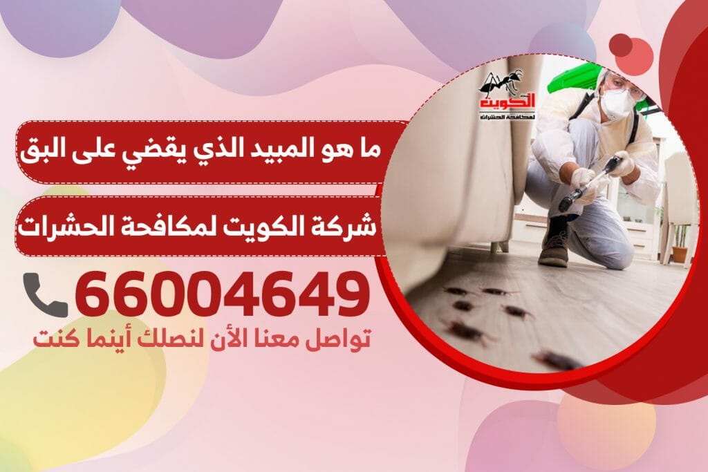 ما هو المبيد الذي يقضي على البق | شركة الكويت لمكافحة الحشرات