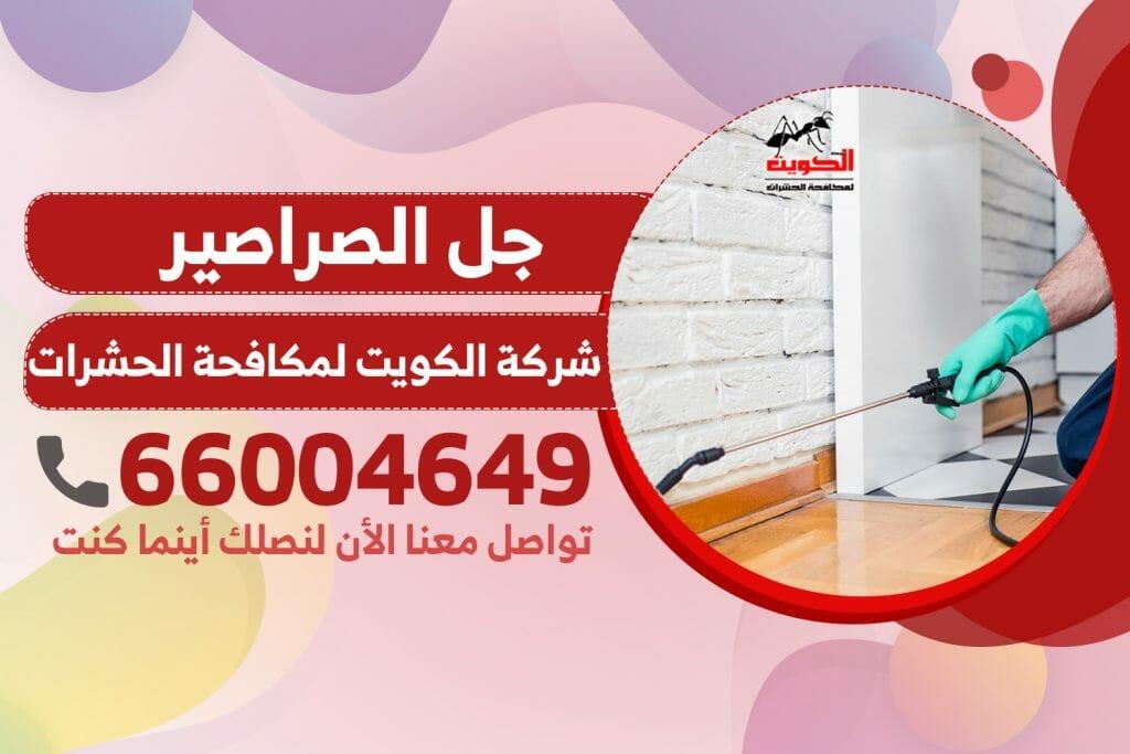 جل الصراصير | شركة الكويت لمكافحة الحشرات